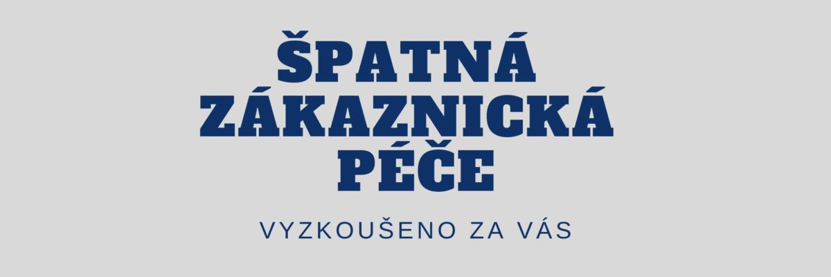 clanek-zakaznicka-pece-ladyvirtual